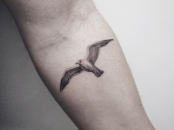 17 seagull tattoos and the meanings