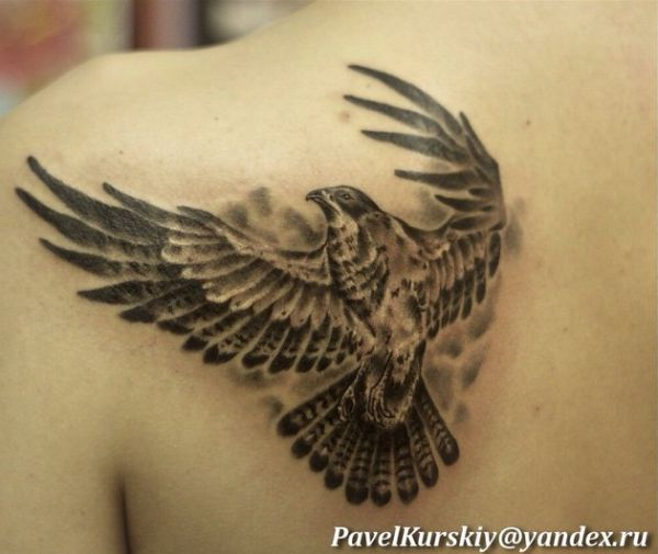 20 Lovely Hawk Tattoos - They're thought-about messengers