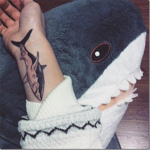 Sharks Tattoos (the most effective footage!)
