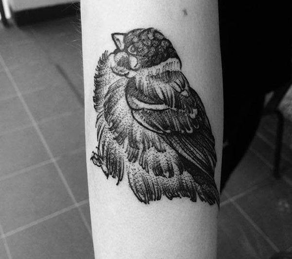 Sparrows Tattoos and meanings