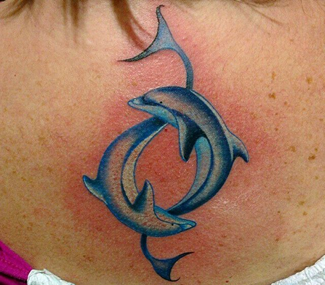 Dolphin tattoos and the meanings