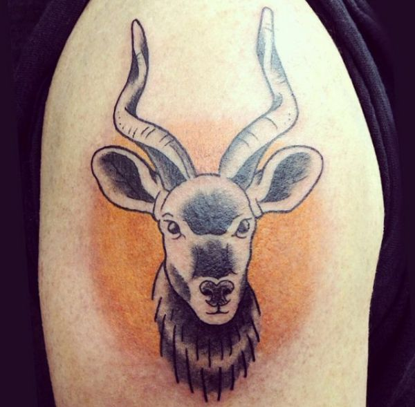 Gazelle and deer tattoos: 20 concepts with that means