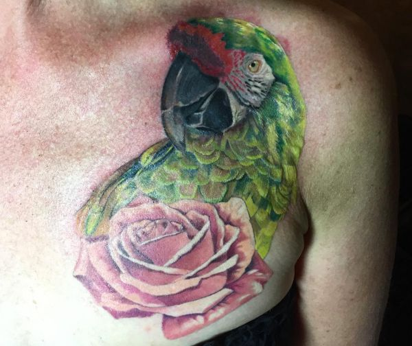 16 attractive parrot tattoos and their meanings