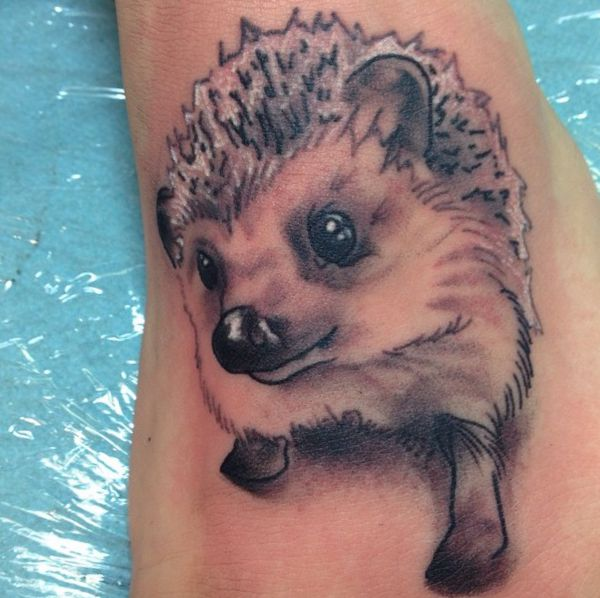 Hedgehog Tattoo Designs With Meanings 20 Concepts Nexttattoos