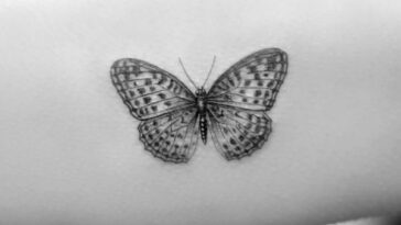 Hot Butterfly Tattoo Designs For Women Nexttattoos